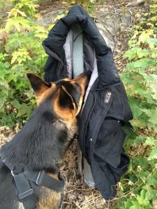Kommissarien hittade en skum jacka