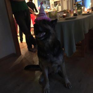 20160327 Som tur är så är PartyKallax trygg i sin henlighet